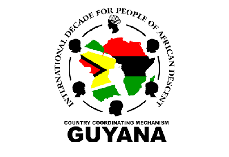 IDPADA-G concerned about Guyana vote at UN