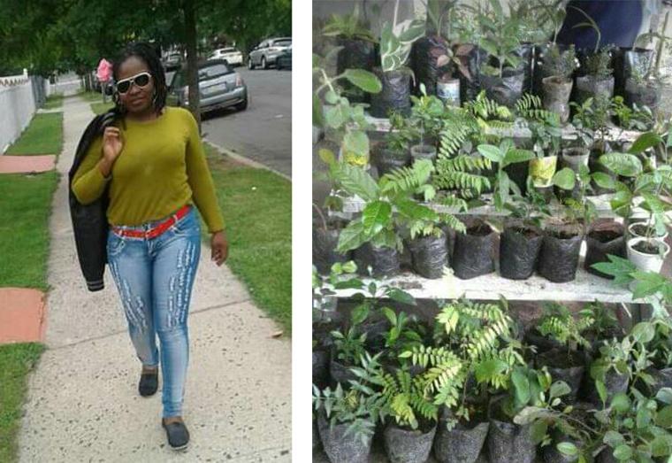 Back to the soil:SAFIX Plant Shop in Linden providing creating a stir