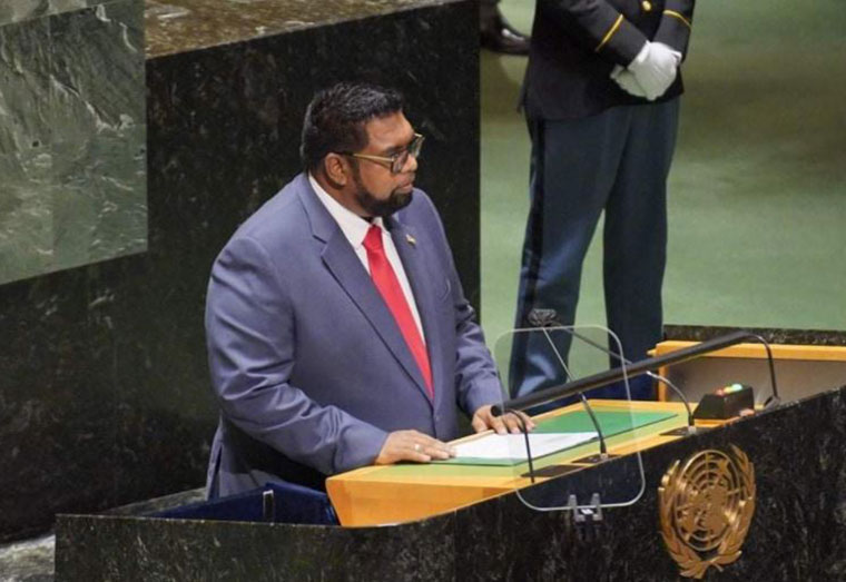 President Ali lobbies for int'l support to reboot economies hard- hit by COVID