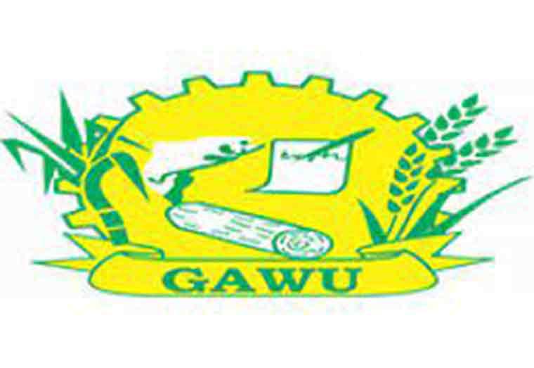 GAWU: Use celebration to engender peace