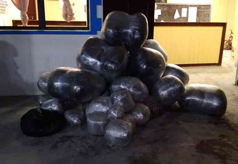 Boats with $20M worth of ganja seized in Corentyne